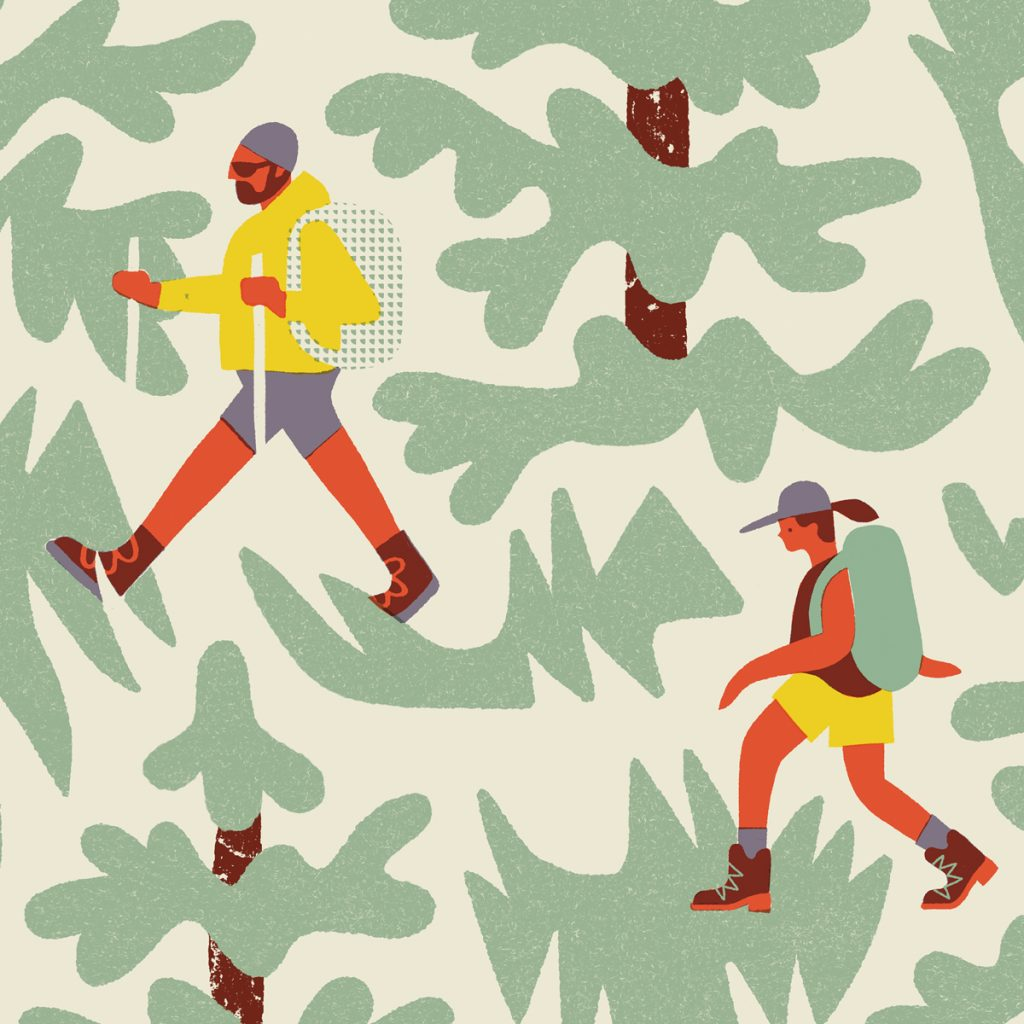 Antra Svarcs, Hikers, Bungalow Series